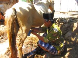 Penduduk asli Desa Palama